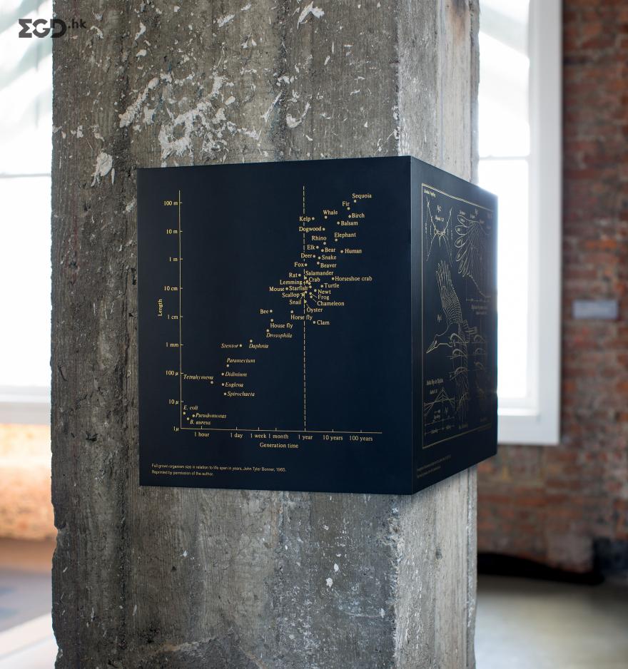 彭博旧金山技术中心环境图形 © Volume Inc.