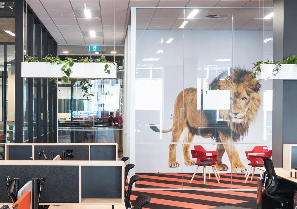 NZME 空间图形设计 © NZME. Group Creative