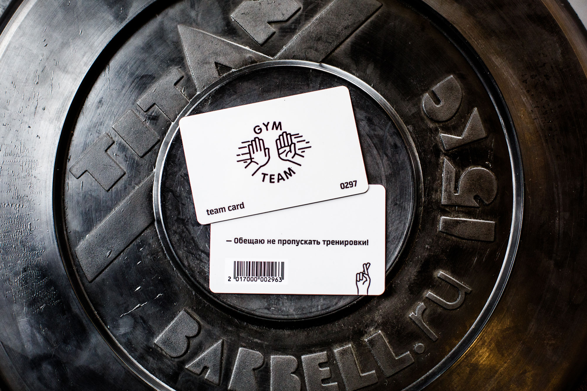 GYM TEAM健身俱乐部标识设计 © zernaev